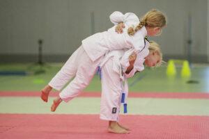 Deze afbeelding heeft een leeg alt-attribuut; de bestandsnaam is Judo-kids-300x200.jpg